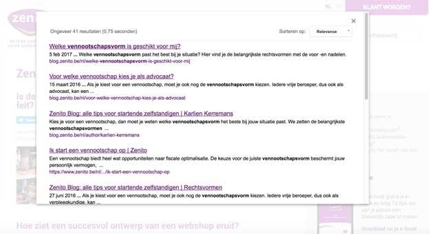 google-site-search-voorbeeld.jpg